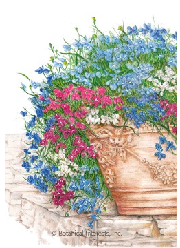 Lobelia Trailing Cascade of Color Heirloom seed packet
